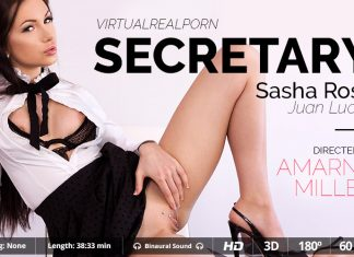 Secretary VR Porn